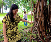 Tree Love, Kuala Lumpur, Banyan Portal