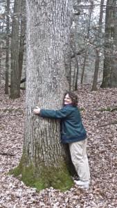 Elisa's Oak