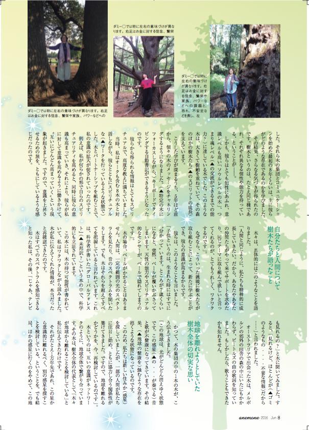 Anemone article Japanese 3