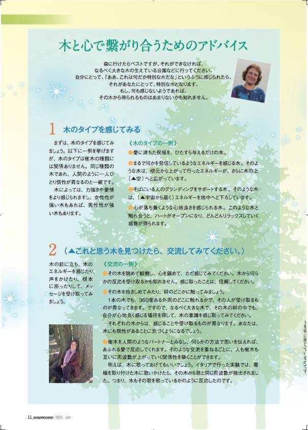 Anemone article Japanese 6